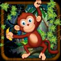 Macaco Aventura Run