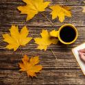 가을 라이브 배경 화면 잎