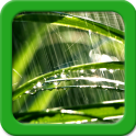 Lluvia Live Wallpapers