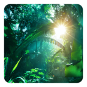 Galaxy S5 Dschungel