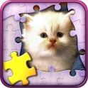 Cute Cats Jigsaw Puzzle