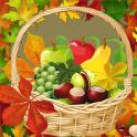 collage de la foto del otoño
