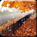 Maple Drops Live Wallpaper