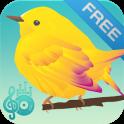 птица звучит мелодии