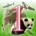 Learn Animal languages