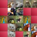 기억력 게임-동물 편