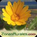 ZonasRurales (casas rurales)