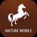iKnow Horses 2 PRO