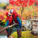 Nice Birds Puzzle