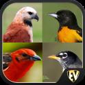 Guide des oiseaux non-percher