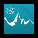 Cостояние снегового лыжный
