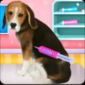 Beagle Puppy Day Care