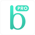 Bridestory Pro (for vendors)
