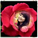 Rose Photo Frames