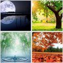 + 1400 Nature Wallpapers