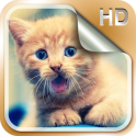 बिल्ली के बच्चे लाइव वॉलपेपर