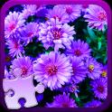 꽃 지그 소 퍼즐 게임
