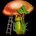 Edible mushroom - Photos