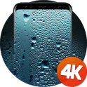 Wet wallpaper 4K