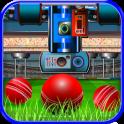 Cricket Ball Factory
