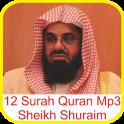Sheikh Shuraim 12 Surah Quran