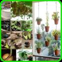 Planting Ideas 2019