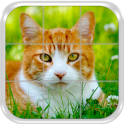 Cats Slide Puzzle Game