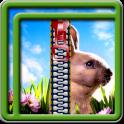 Zipper Lock Screen Bunny