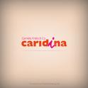 caridina · epaper