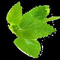 Şifalı Bitkiler (İnternetsiz)