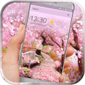 Flowers spring pink blossom