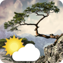 Realistic Weather All Seasons Live Wallpaper