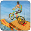 Fearless Bicycle Stunt BMX Rider 2019