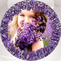 Lavender Photo Collage