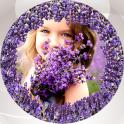 Lavender Photo Collage