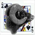 Sheepshead Scorer