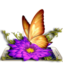 Gold Butterfly 3D Theme