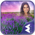 Lavender Photo Frames