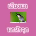 Thai Bird Head