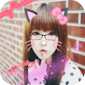 Cat Face Editor