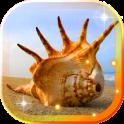 Sea Shells Beach live wallpaper