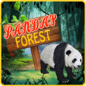 Panda's Forest