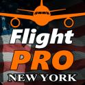 Pro Flight Simulator NY 4K