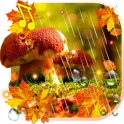 Autumn Rain live wallpaper