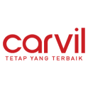 Carvil Online Store