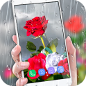 Rose Live Wallpaper 2019 with Waterdrops