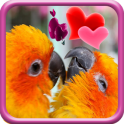 Love Birds Live Wallpaper