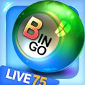 Bingo City Live 75+Vegas slots