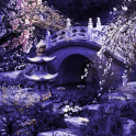 Mystic Sakura Live Wallpaper