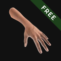 Hand Draw 3D Pose Tool FREE